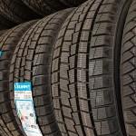 Sunny žieminės kryptinės padangos tai geras sukibimas ir nepriekaištingas stabdymas. Šios padangos pasižymi ilgaamžiškumu. Kompanija Sunny įkurta 1988 m.Priklauso South China Tire & Rubber Co., Ltd. (SCTR). Tai pirmoji iš įmonių ir išliekanti tarptautiniu lygiu dėl automobilių, sunkvežimių ir komercinių padangų Sunny, Wanli gamybos. Visi gaminiai yra sertifikuoti: